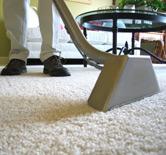 Detroit Carpet Cleaning