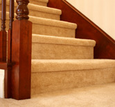 Metro Detroit Carpet Cleaning